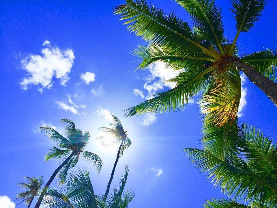 Maui Hawaii Natural Gas