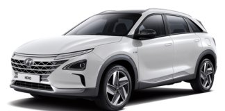 fuel cell evs
